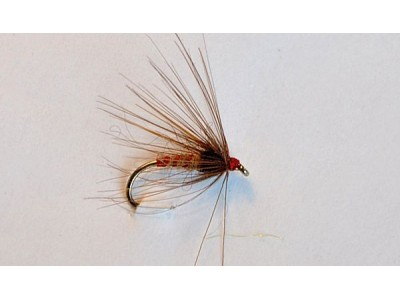 Wet-fly First Chance-2