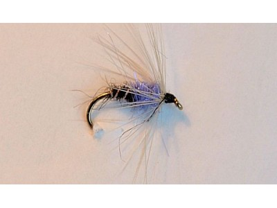 Wet-fly First Chance-3
