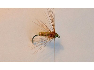 Wet-fly Second Chance-1