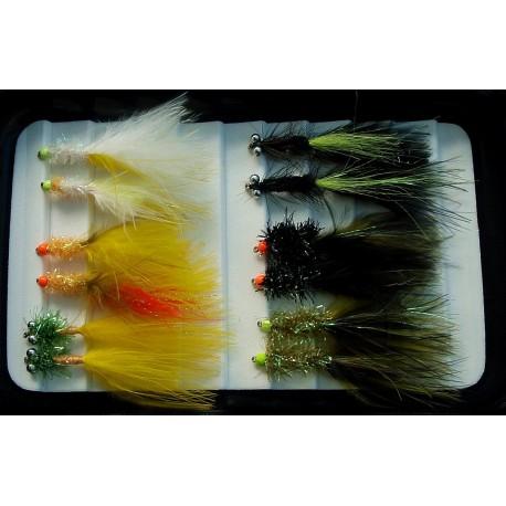Auswahl Erfahrene Fischer