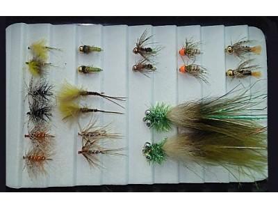 Auswahl für Forellen