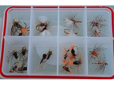 Selection of the essential flies