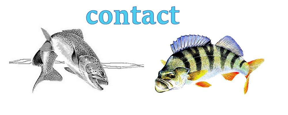 formulaire de contact avec claude behr