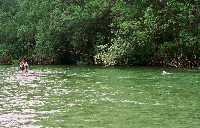 flyfishing in Slovenia, Claude Behr, the author,catching a big rainbow
