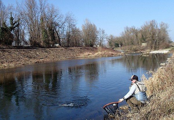 Ouverture de la pêche en 1° catégorie sur le contre-canal de drainage à l'aval de Strasbourg