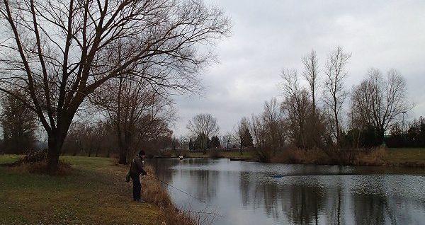 Ma dernière séance de pêche à Seltz