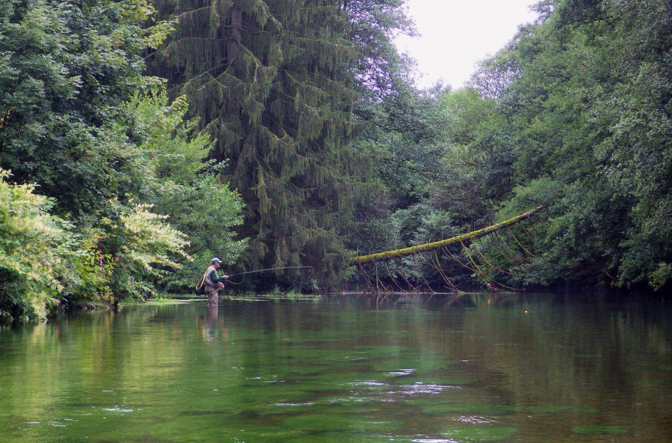 pêche à la mouche sur la Moselle dans le département des Vosges