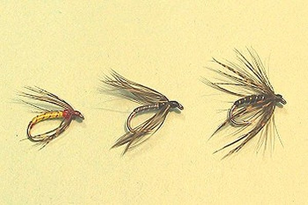The classic wet fly train of Jean-Louis Preiser