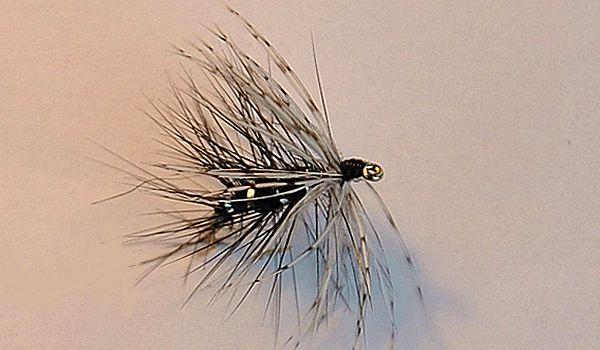 CBN, la Claude Behr Noire est une excellente imitation des bibios ezt des sialis, présents en avril au bord de l'eau