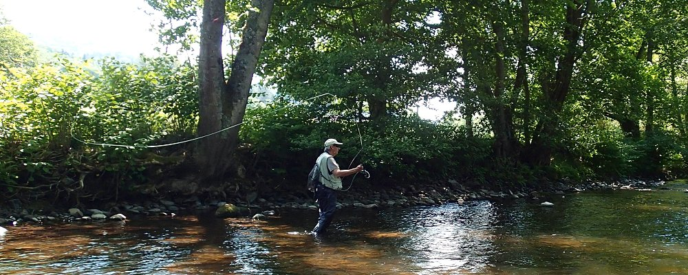 Flyfishing in Alsace -France